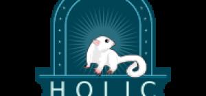 SG Holic-min